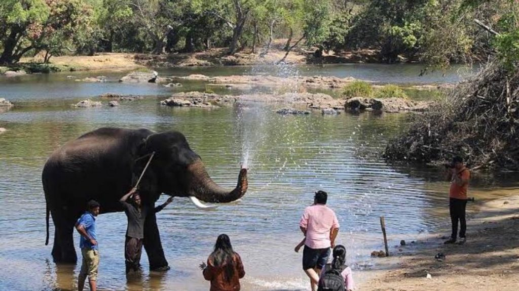 TRAVELOGUE - COORG