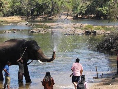 TRAVELOGUE – COORG