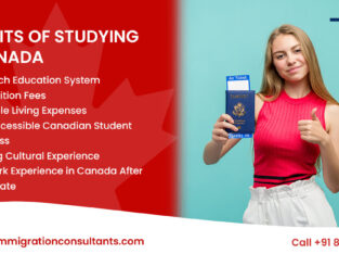 Best Immigration Consultants In Goa For Canada | Study Visa – TIC